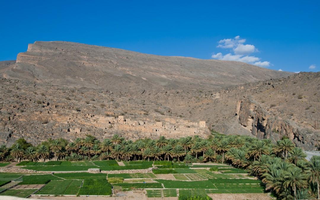 El oasis de Wadi Ghul