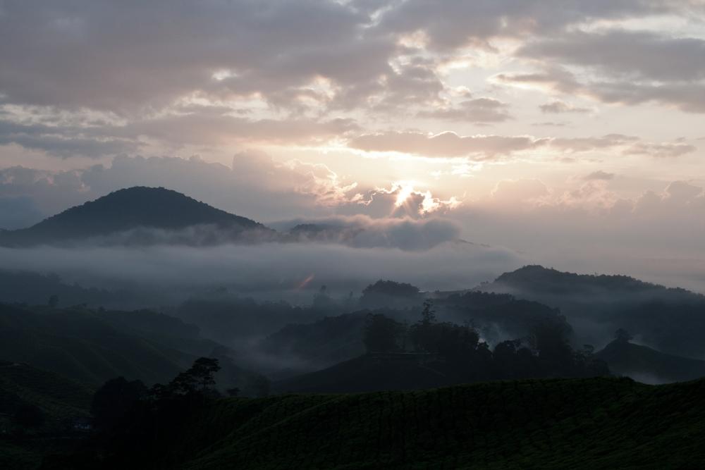 Amanecer-en-Cameron-Highlands