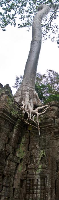 Angkor-III