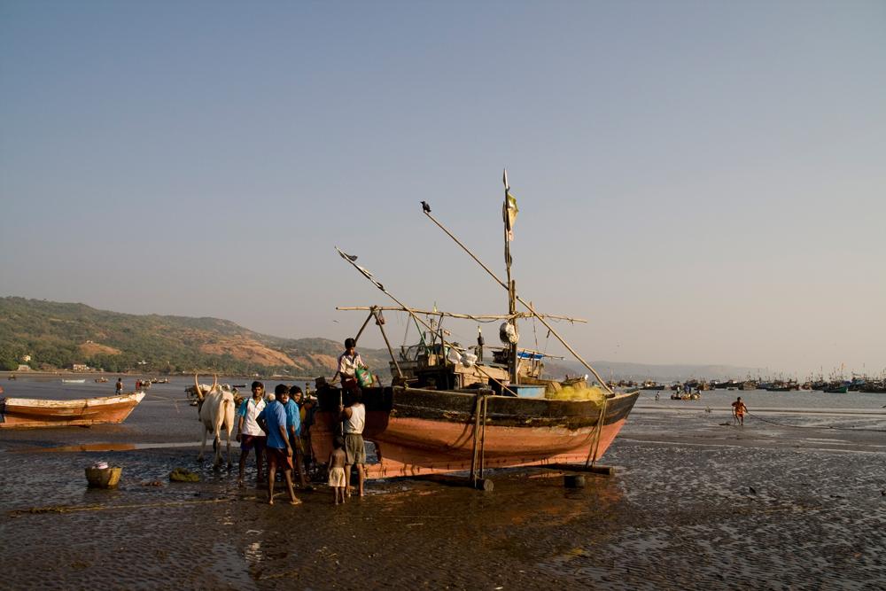 Barco-de-pesca-II