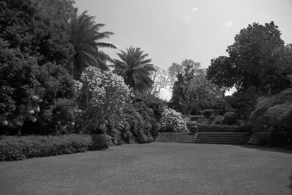 Brief-gardens-de-Aluthgama-V