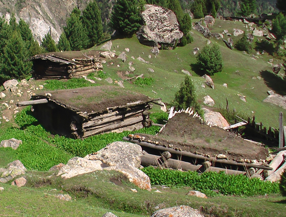 Cabañas-de-pastores-y-granjeros-en-Fairy-Meadow
