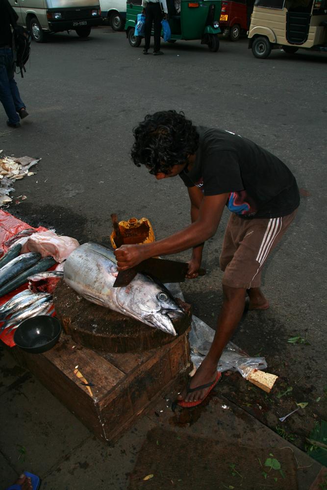 Cabeza-de-pescado