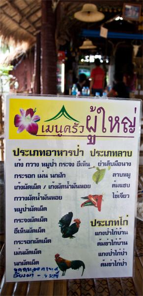 Camino-a-Bangkok-II