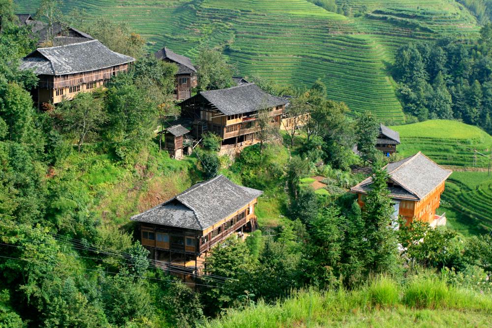 Casas-entra-arrozales