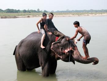Chitwan-III