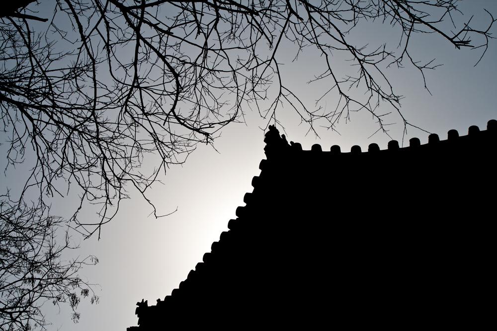 Contraluz-de-templo