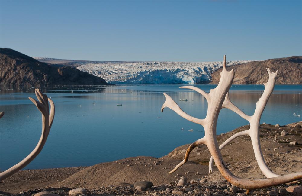 Cuernos-de-Caribú-y-frente-glaciar