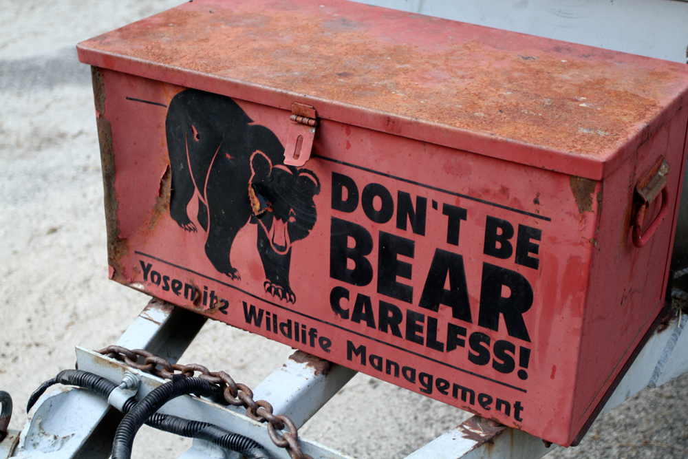 Cuidado-con-los-osos
