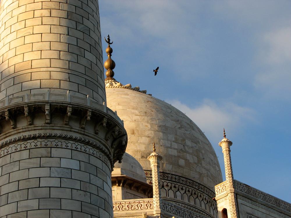 Detalle-del-Taj-Mahal
