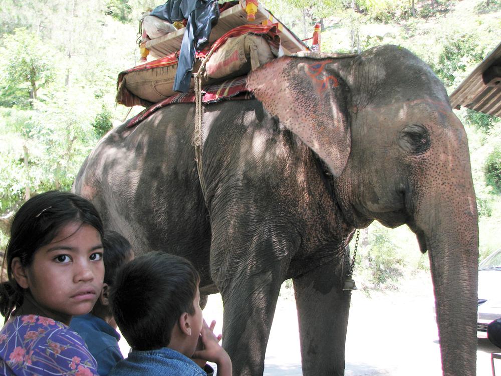 Elefante-y-niña