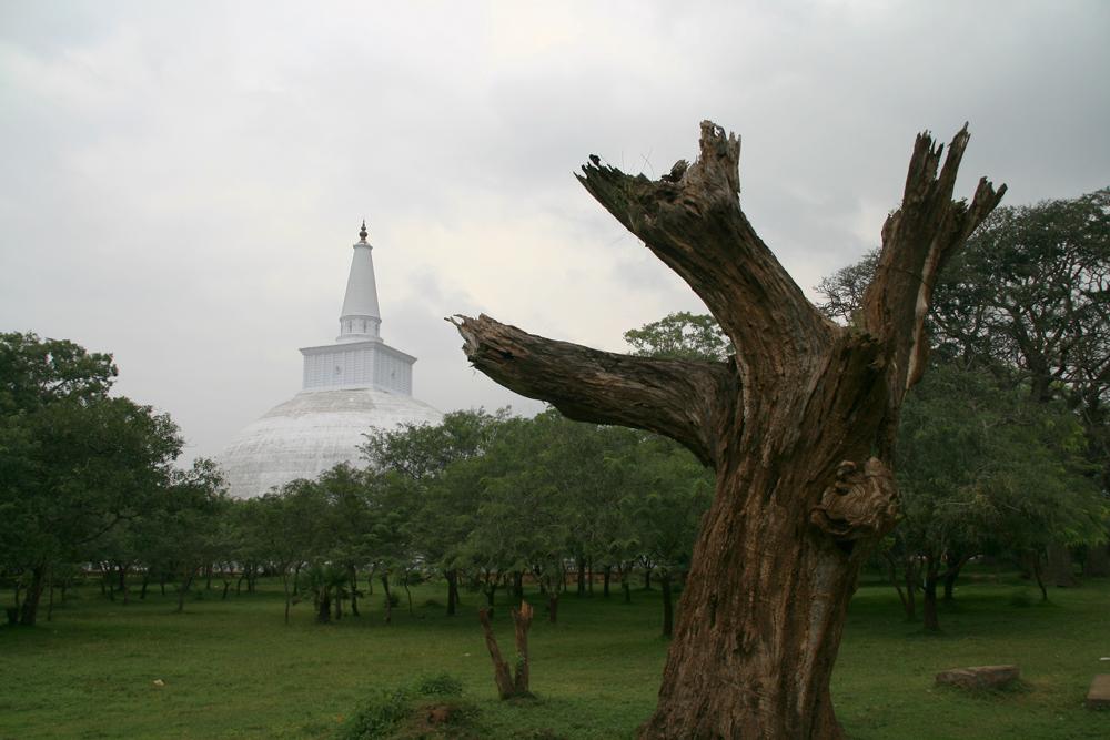 Estupa-de-Ruvanvelisaya