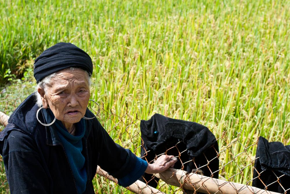 Etnia-Hmong