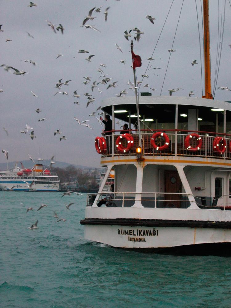 Ferry-en-el-cuerno-de-oro
