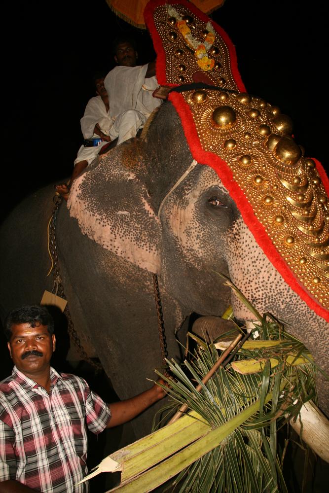 Festival-de-Kerala-II