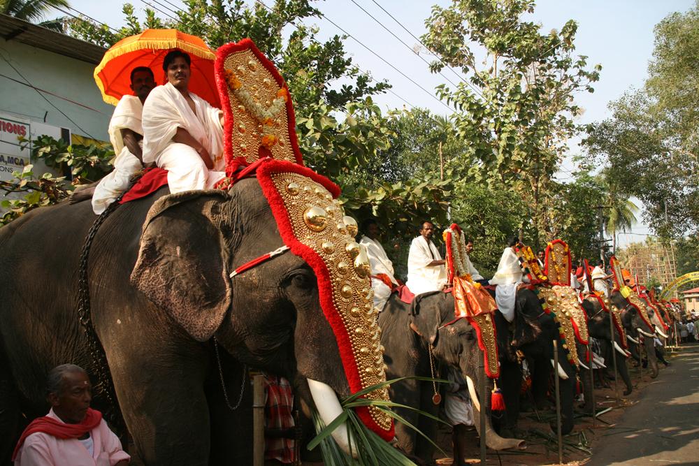 Festival-de-Kerala-VI