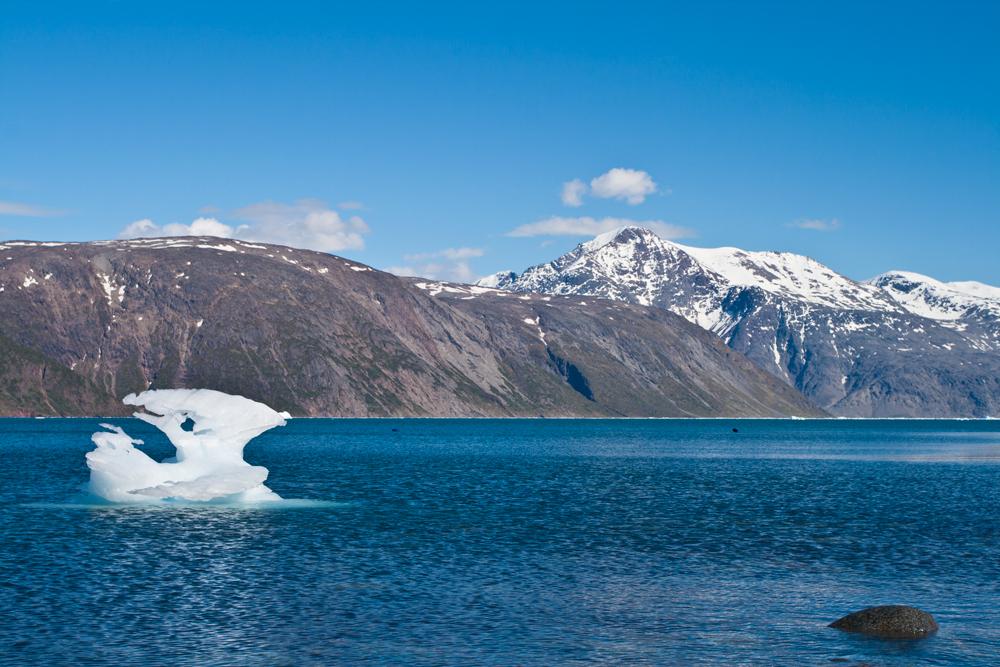 Iceberg-IX