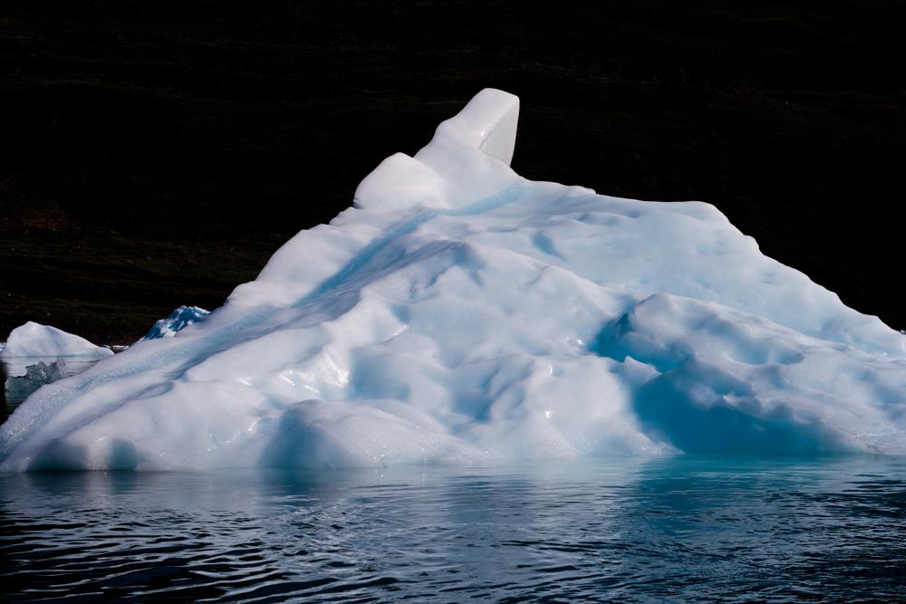 Iceberg-X