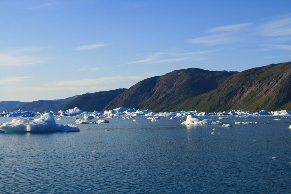 Icebergs-en-el-fiordo