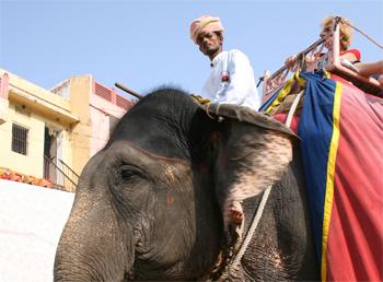 Jaipur-VII