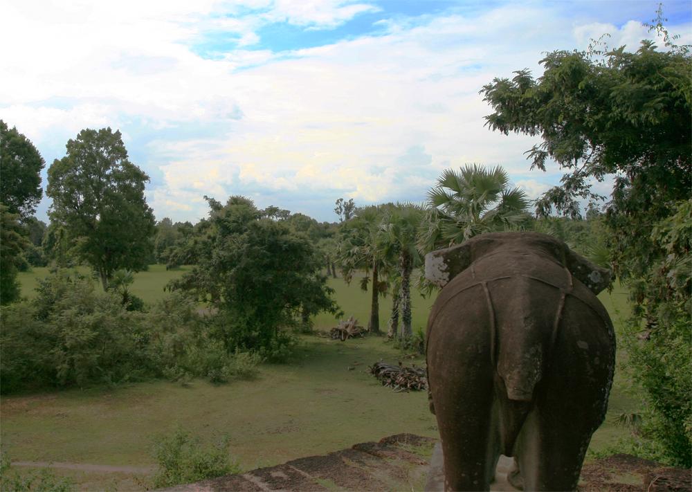 Jungla-en-Angkor