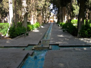 Kashan-VI