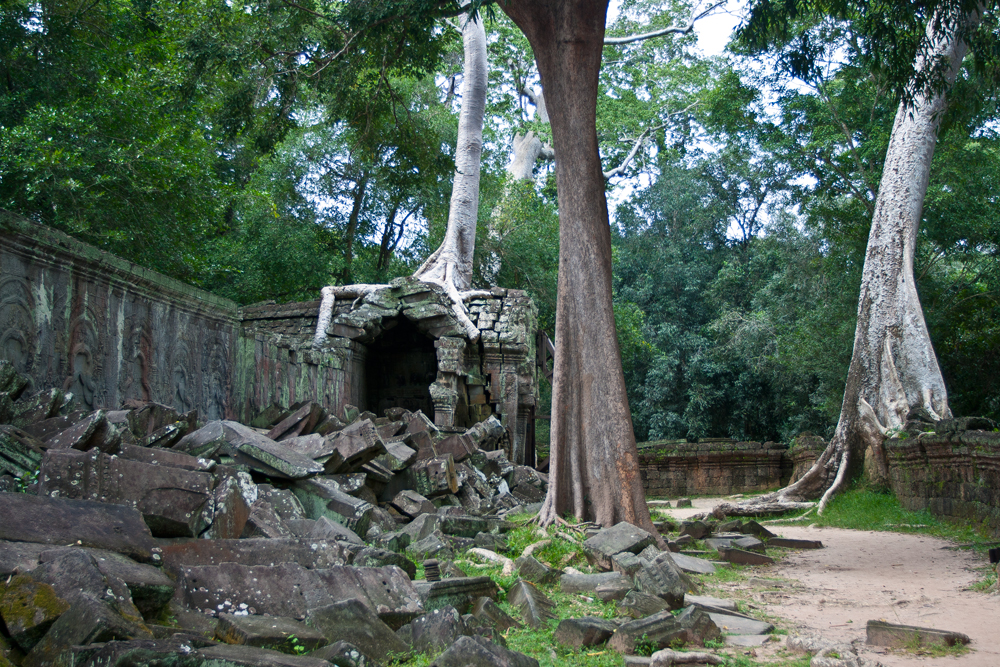 La-jungla-se-come-a-Angkor-V