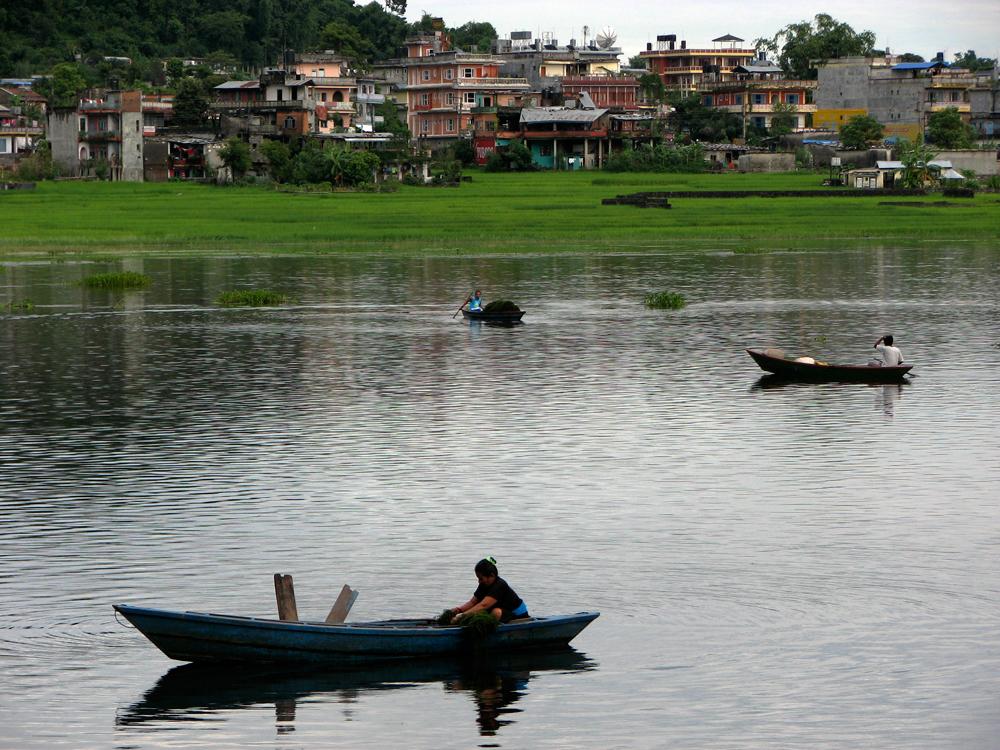 Lago-Phewa-II
