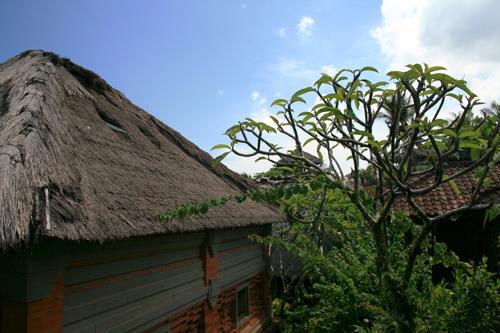Llegada-a-Bali-III