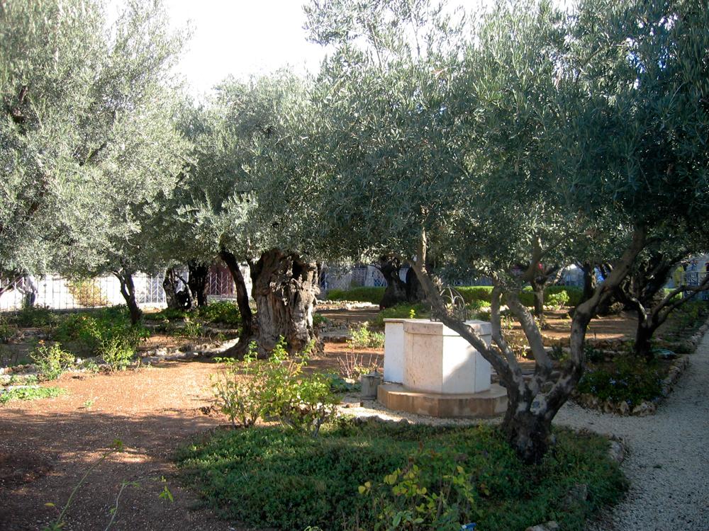 Los-jardines-de-Getsemaní