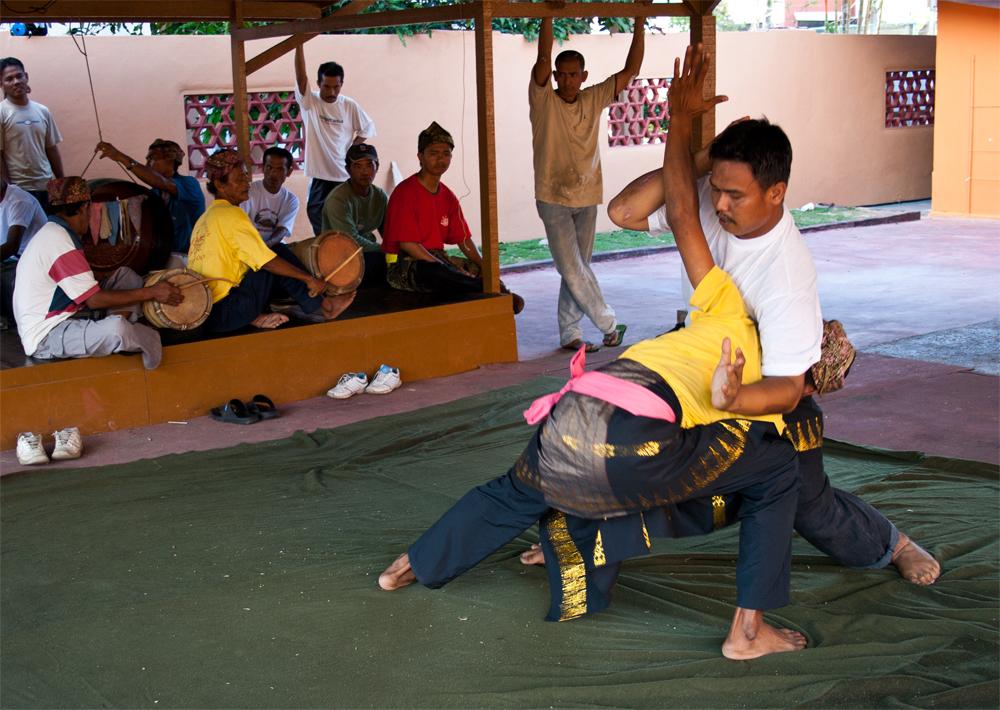 Luchadores-de-Silat-II