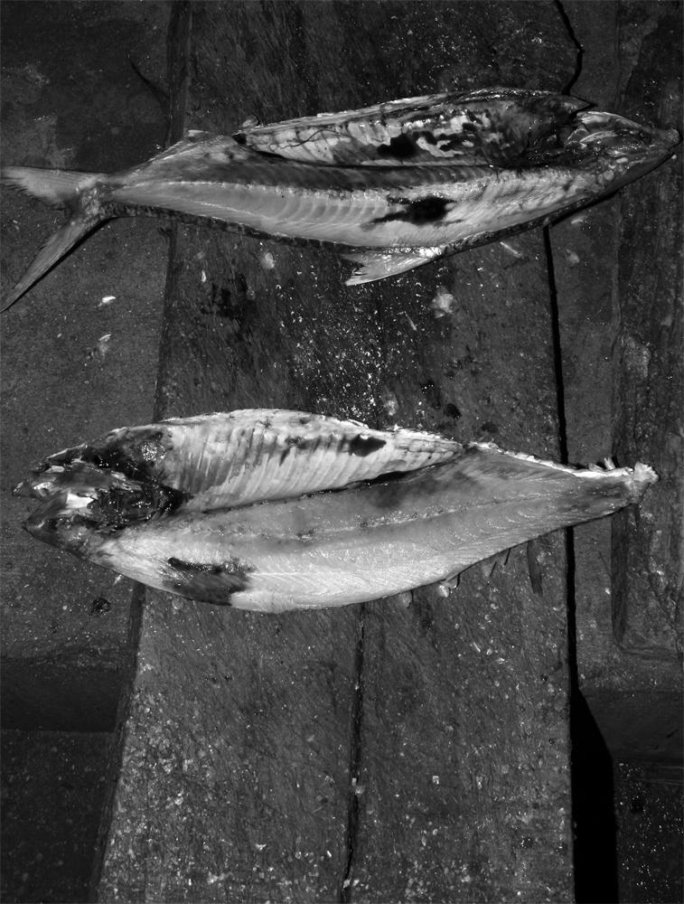 Mercado-de-pescado-II
