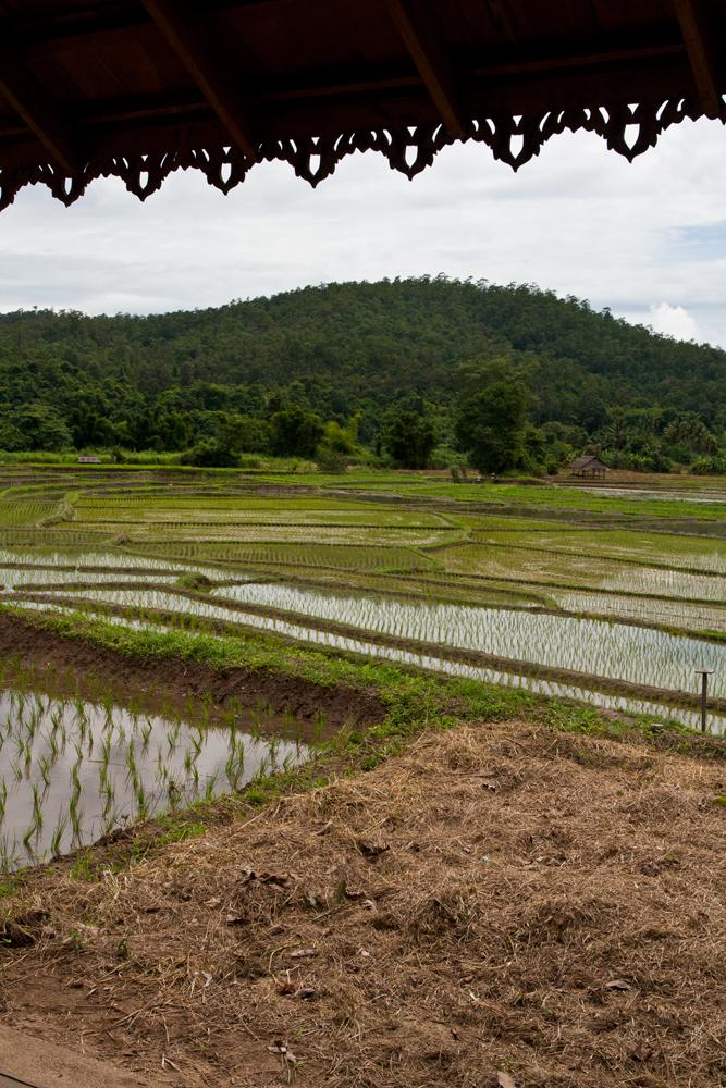 Paisaje-del-noroeste-de-Tailandia-VI