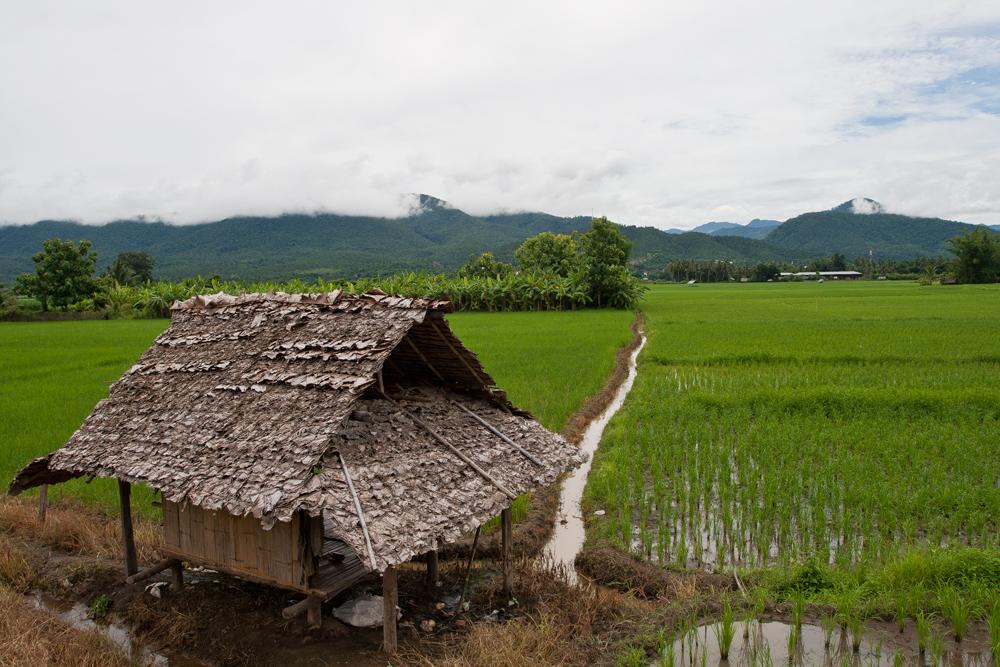 Paisaje-del-noroeste-de-Tailandia