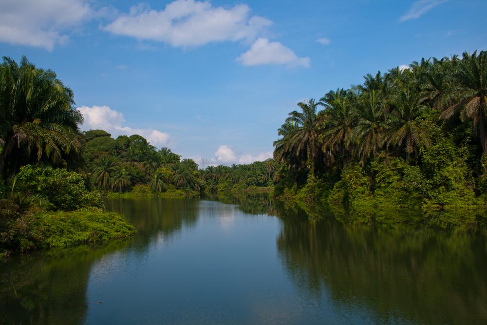 Paisaje-en-la-provincia-de-Terengganu