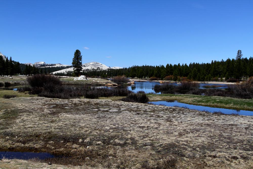 Parque-nacional-de-Yosemite-II