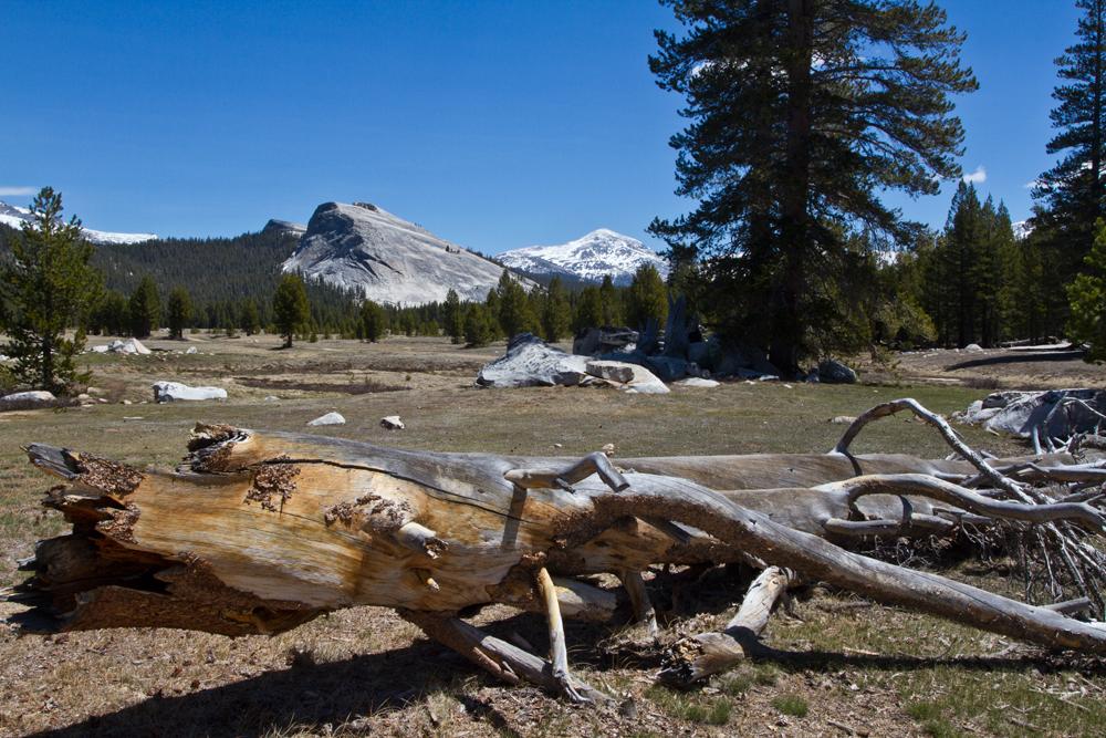 Parque-nacional-de-Yosemite