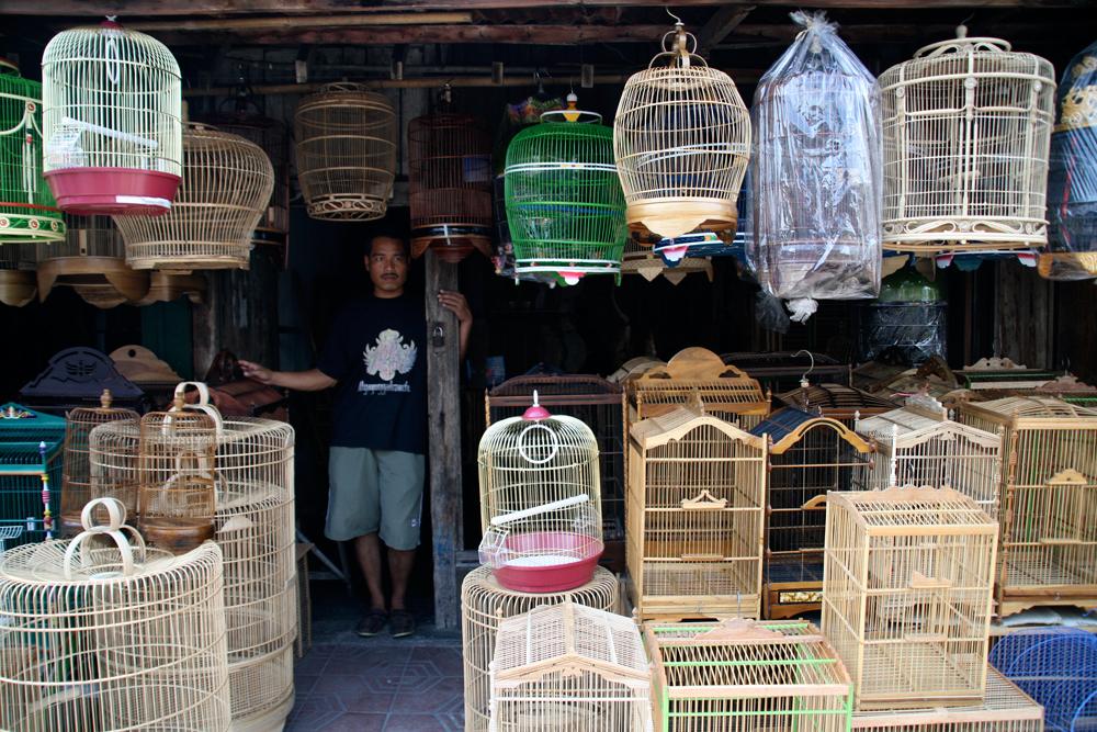 Pasar-Ngasem-o-Bazar-de-los-Pájaros-II