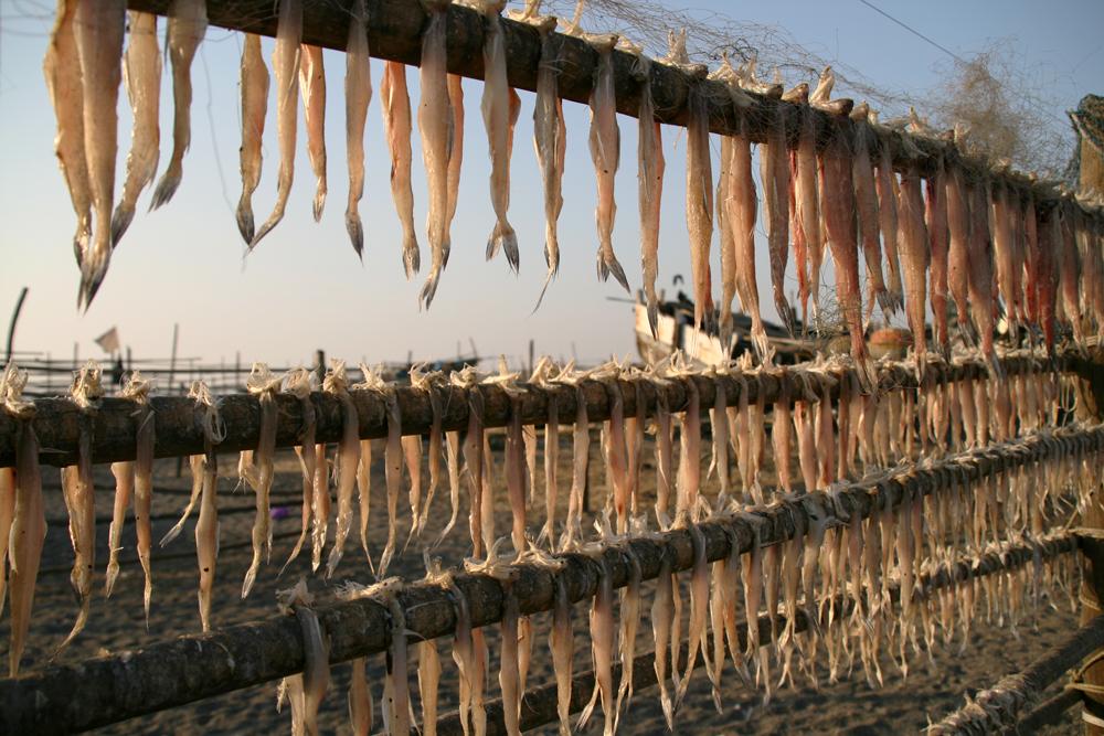 Pescado-a-secar