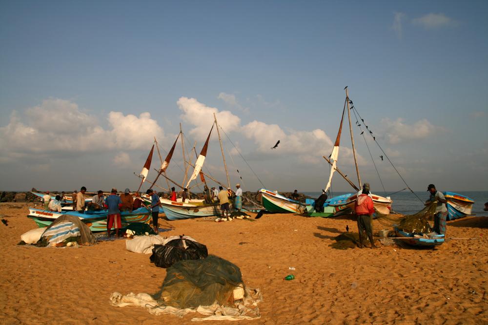 Pescadores-en-Negombo-II