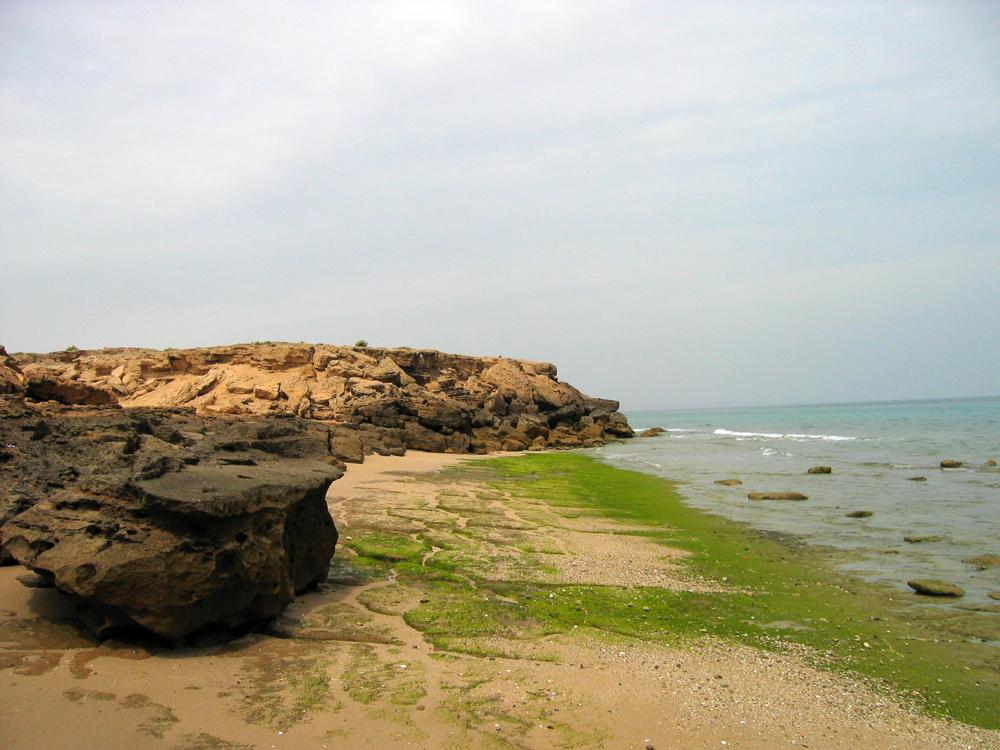 Playa-del-golfo-persico-III