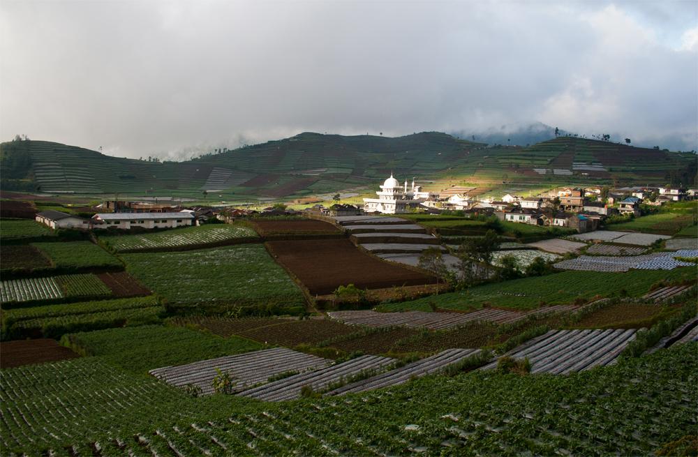 Pueblo-de-Dieng