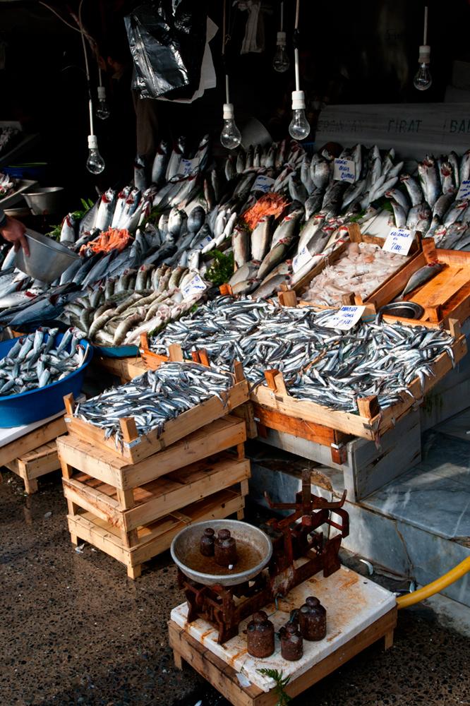 Puestos-de-pescado-en-Galata