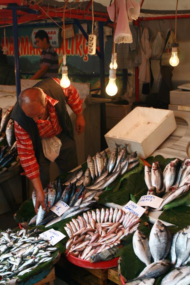 Puestos-de-pescado