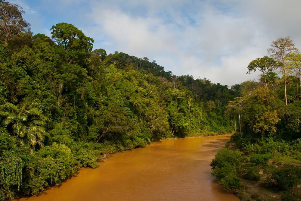 Río-Sungai-Tembeling