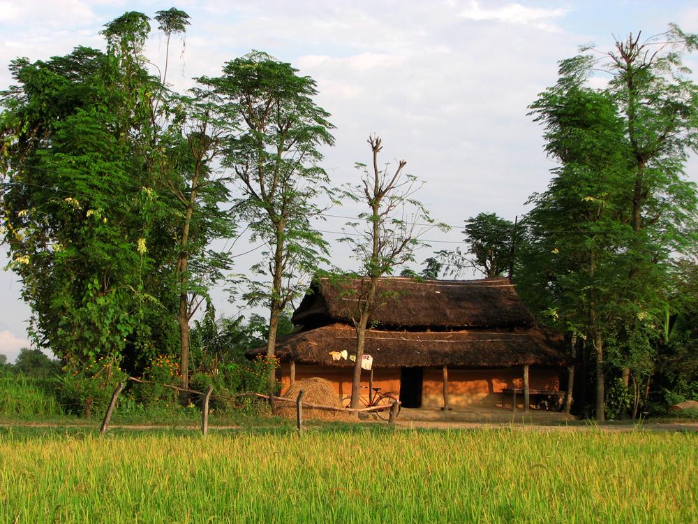 Región-de-Chitwan-II