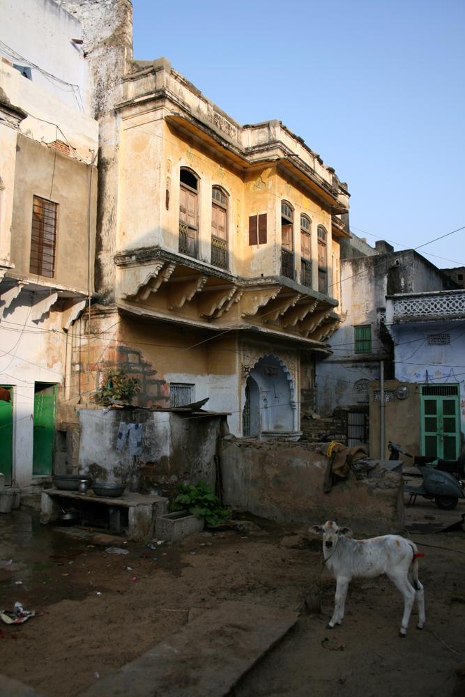 Rincón-de-Pushkar-II