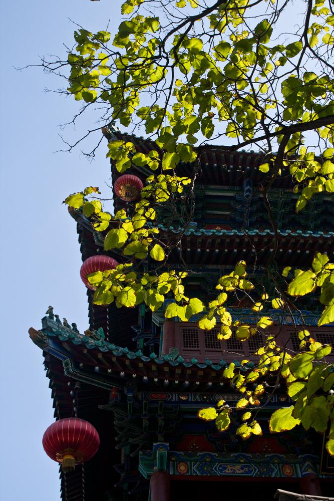 Templo-Shaolin-IV