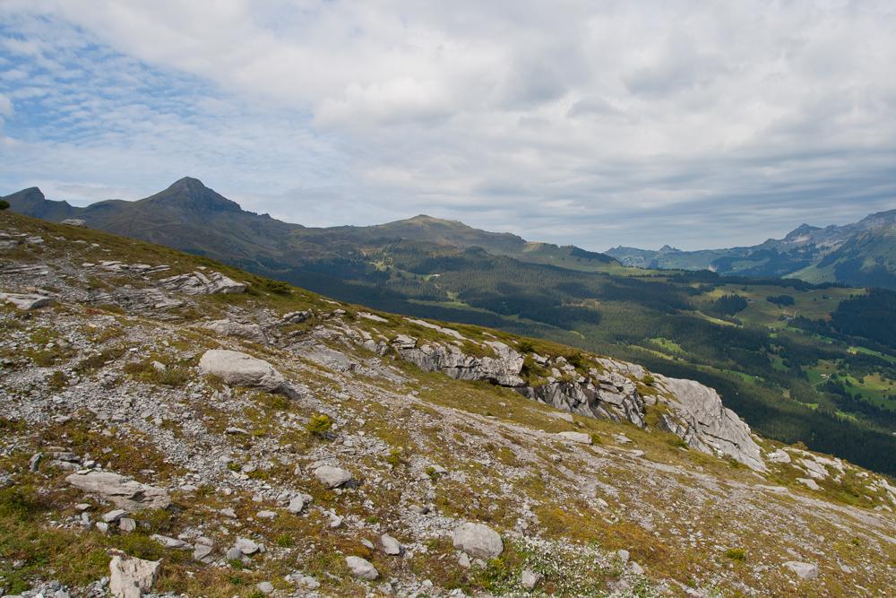Trekking-de-Grindelwald-a-las-faldas-del-Eiger-VIII