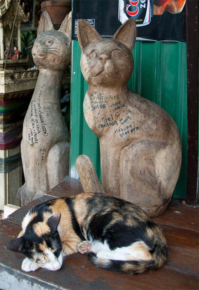 Tres-Gatos
